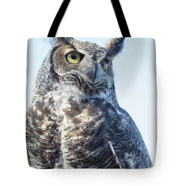 Great Horned Owl 1 Tote Bag