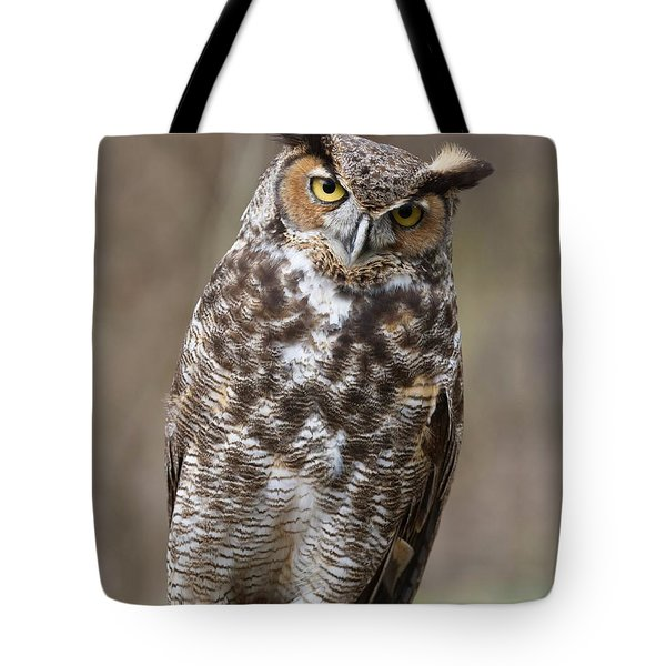Great Horned Owl 3 Tote Bag