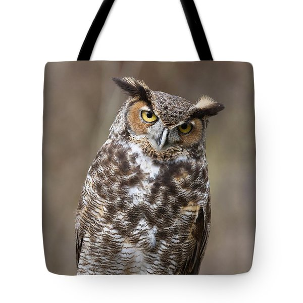 Tote Bag featuring the photograph Great Horned Owl 3 by Chris Scroggins