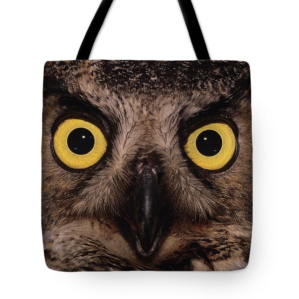 Great Horned Owl Face Tote Bag by Tony Beck
