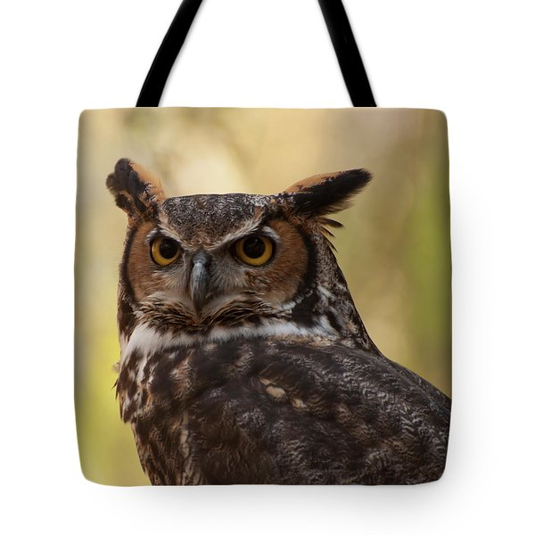 Great Horned Owl In A Tree 1 Tote Bag by Chris Flees