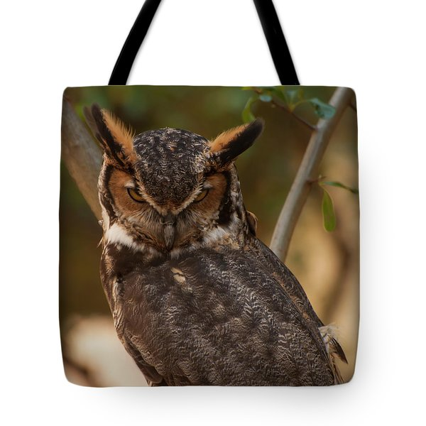 Great Horned Owl In A Tree 2 Tote Bag by Chris Flees