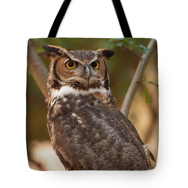 Great Horned Owl In A Tree 3 Tote Bag by Chris Flees