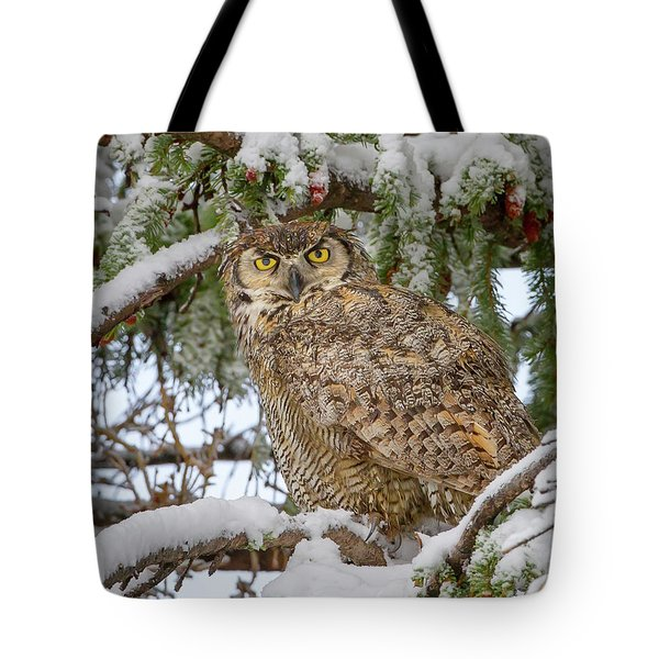 Great Horned Owl In Snow Tote Bag by Jack Bell