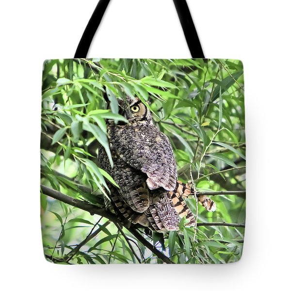 Great Horned Owl Looking At You Tote Bag