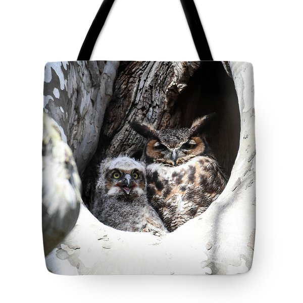 Great Horned Owl Nest Tote Bag