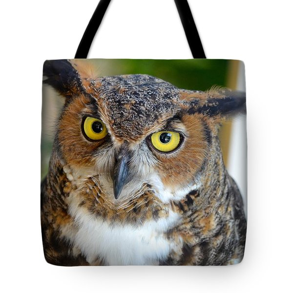 Great Horned Owl  Tote Bag by Richard Bryce and Family