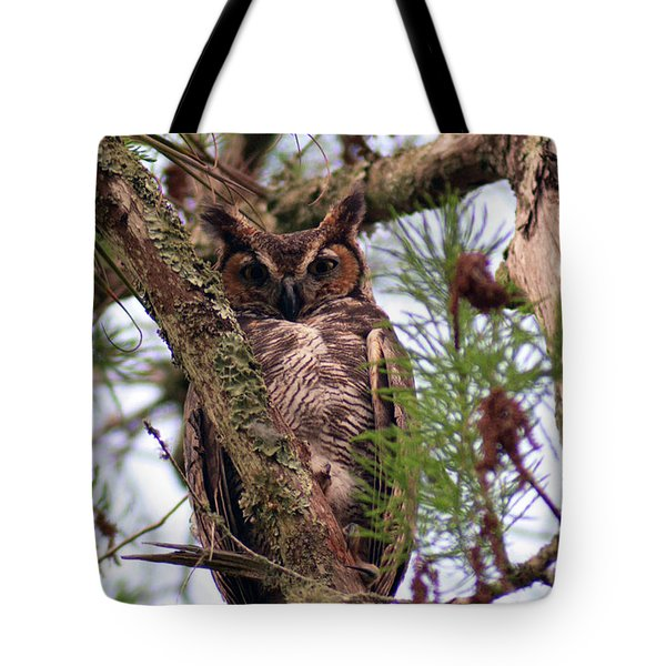 Tote Bag featuring the pyrography Great Horned Owl by Sally Sperry