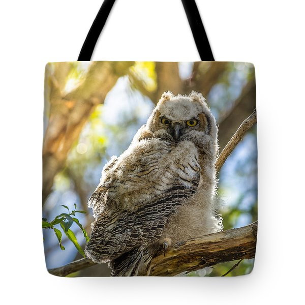 Great-horned Owlet In Spring Tote Bag