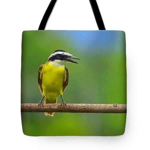 Great Kiskadee Tote Bag by Tony Beck