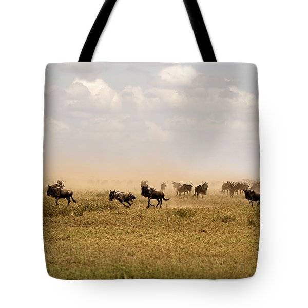 Great Migration Tote Bag