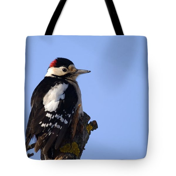 Great Spotted Woodpecker Against Blue Sky Tote Bag