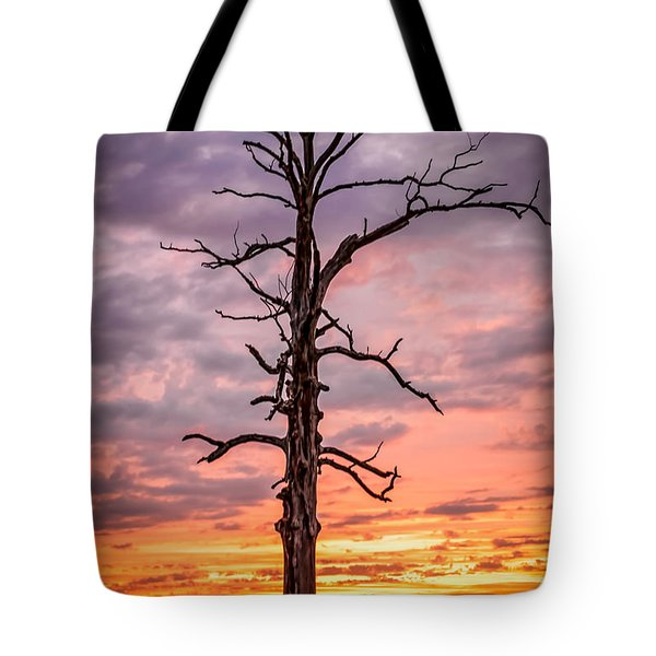 Great Tree At Sunset Tote Bag
