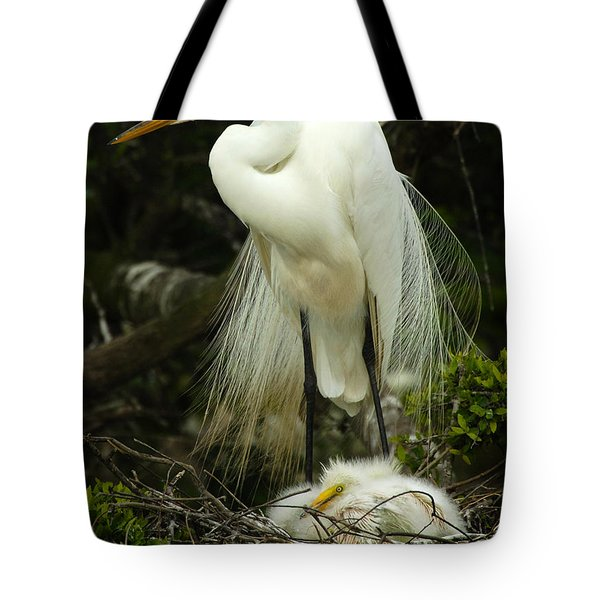Majestic Great White Egret High Island Texas 3 Tote Bag by Bob Christopher