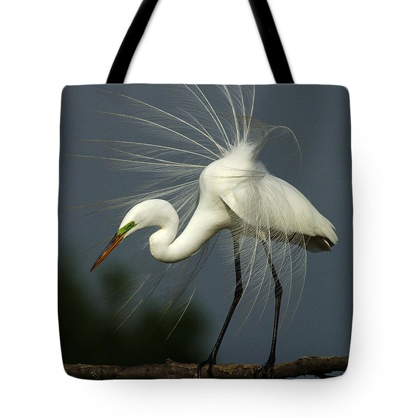 Majestic Great White Egret High Island Texas Tote Bag by Bob Christopher
