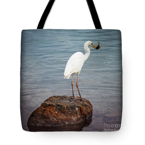 Great White Heron With Fish Tote Bag by Elena Elisseeva