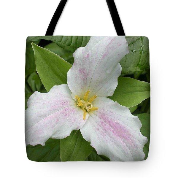 Great White Trillium Tote Bag