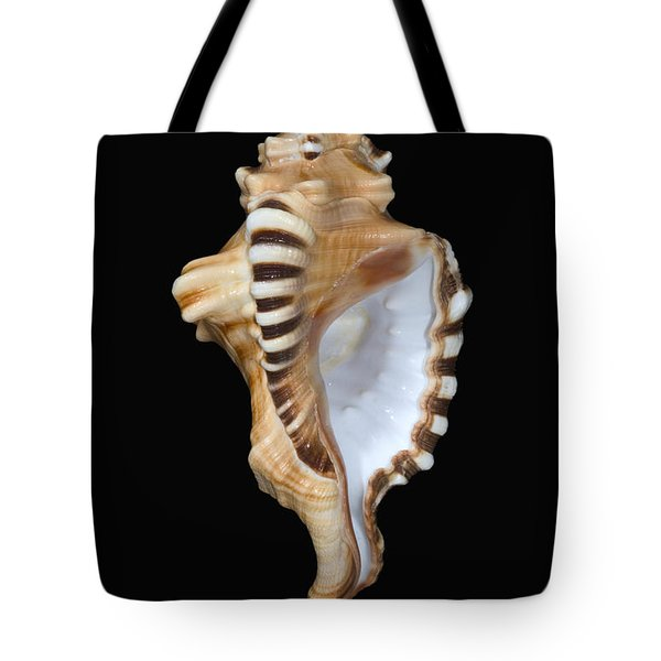 Great White Tooth Tote Bag by Dave Fleetham - Printscapes