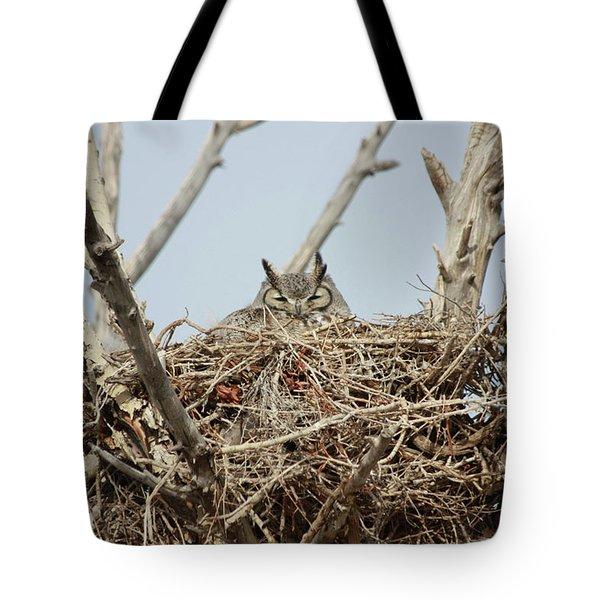 Greathornedowl3 Tote Bag
