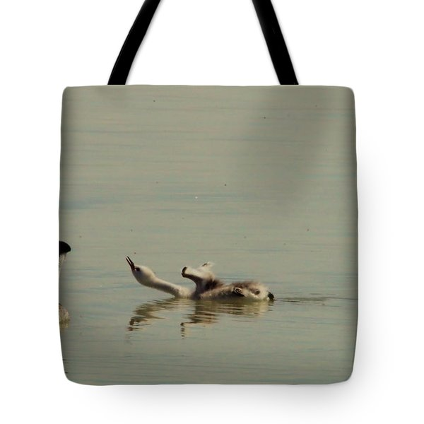 Grebe Chick In All Its Grace Tote Bag