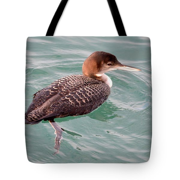 Tote Bag featuring the photograph Grebe In The Water by AJ Schibig