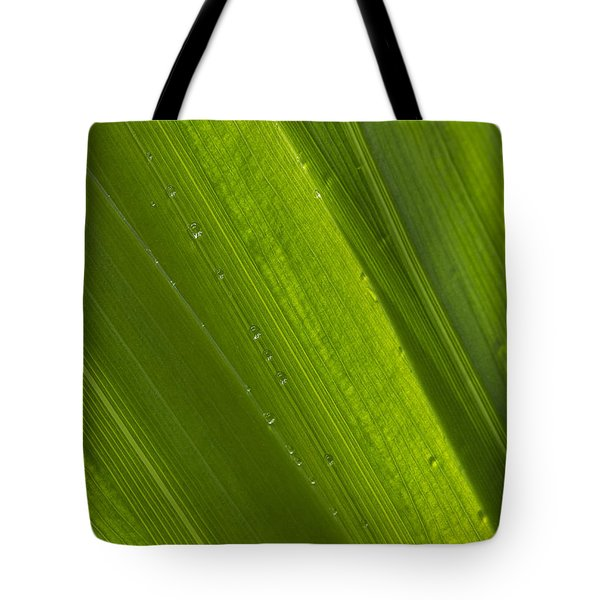 Green Abstract 2 Tote Bag