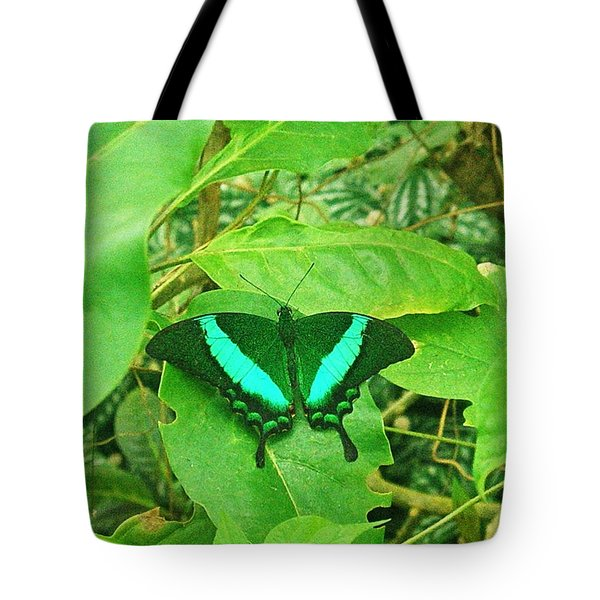 Green And Aqua Butterfly Tote Bag