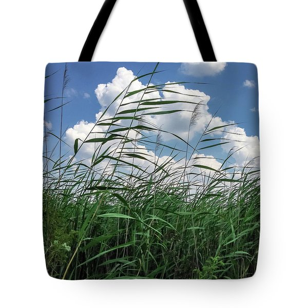 Tote Bag featuring the photograph Green And Blue by Chris Feichtner