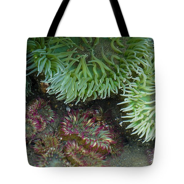 Green And Strawberry Anemonies Tote Bag
