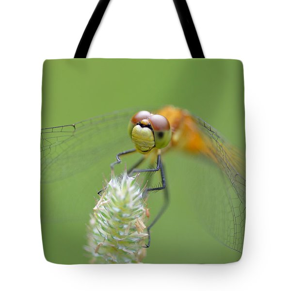 Green Angles Tote Bag