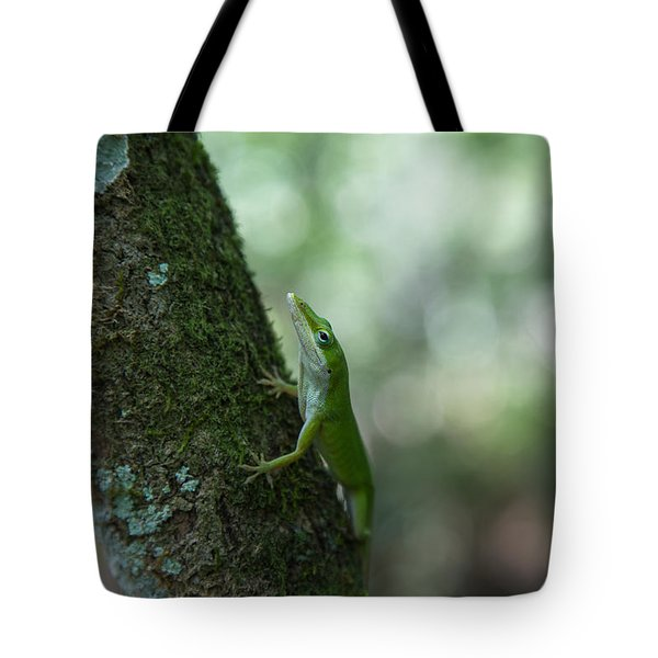 Green Anole Tote Bag