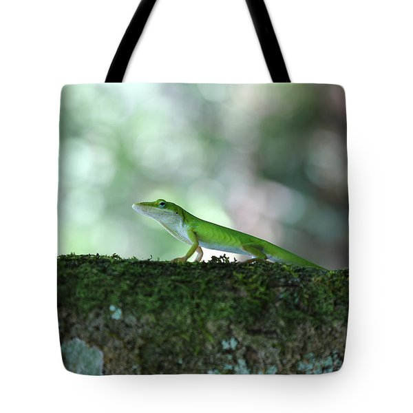 Green Anole Posing Tote Bag