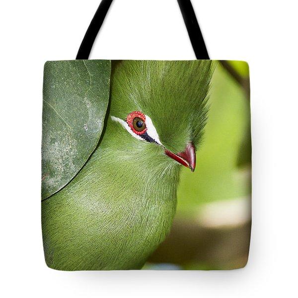Green Turaco Bird Portrait Tote Bag