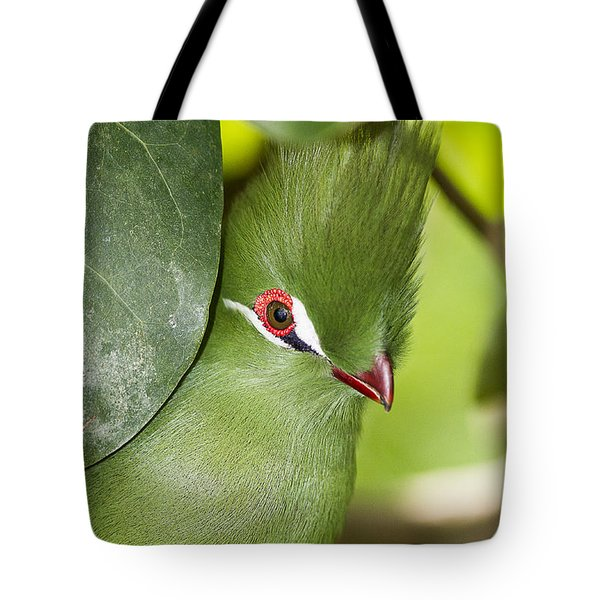 Green Turaco Bird Portrait Tote Bag
