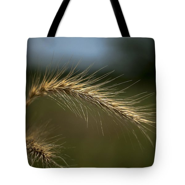 Green Blue Gold Tote Bag