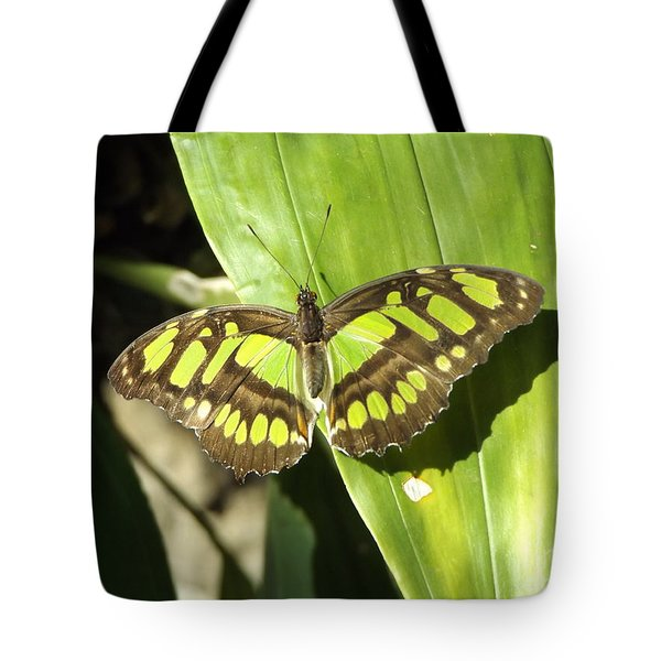 Green Butterfly Tote Bag by Erick Schmidt