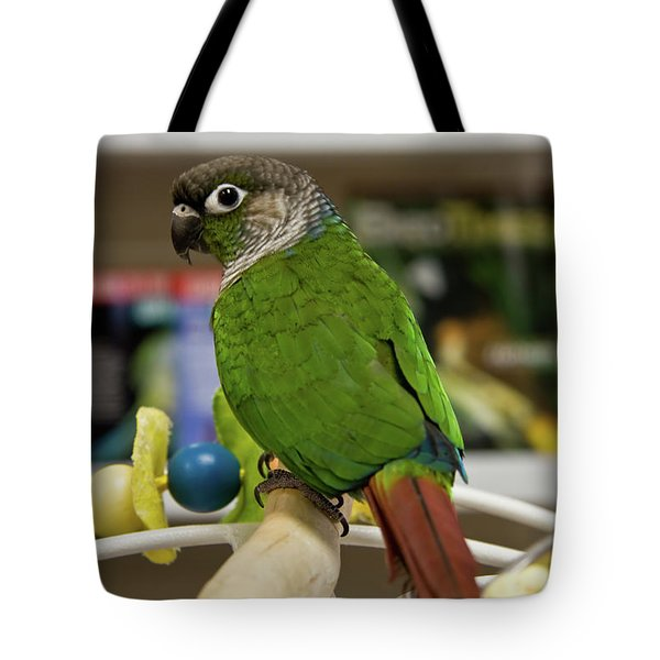 Green Cheek Conure Tote Bag