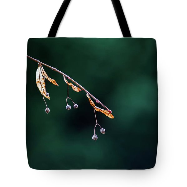 Green Contrast Tote Bag by Vincent Pelletier
