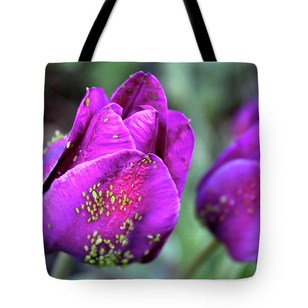 Aphids On Purple Tulips Tote Bag