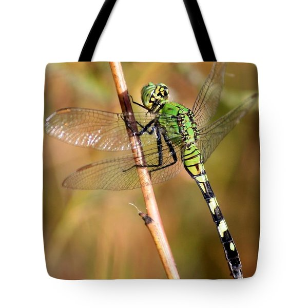 Green Dragonfly Closeup Tote Bag by Carol Groenen