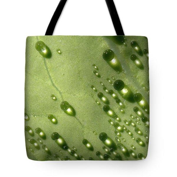 Green Drops Tote Bag