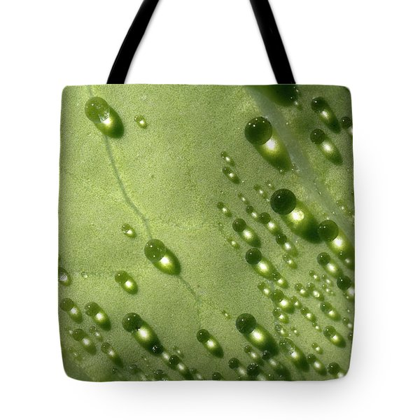 Green Drops Tote Bag