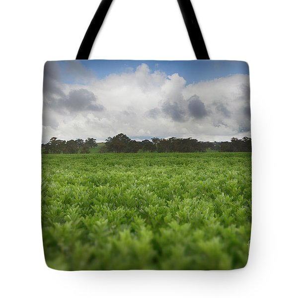 Tote Bag featuring the photograph Green Fields 4 by Douglas Barnard