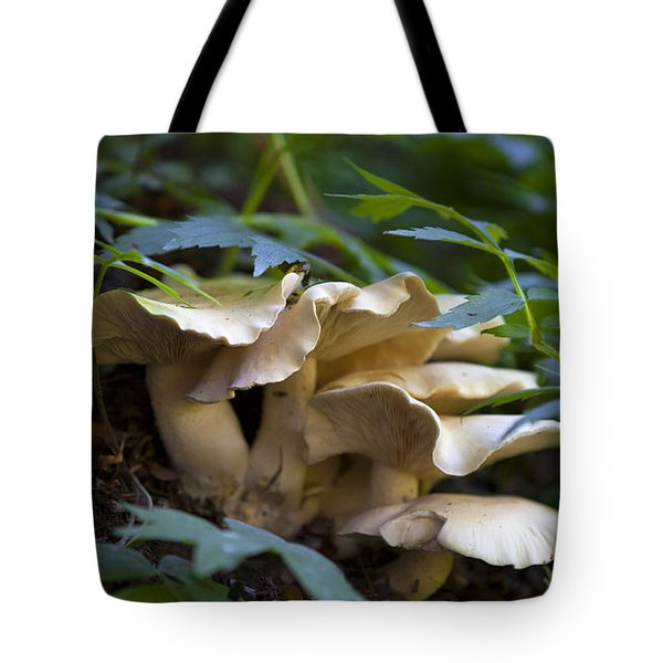 Green Forest Floor Tote Bag