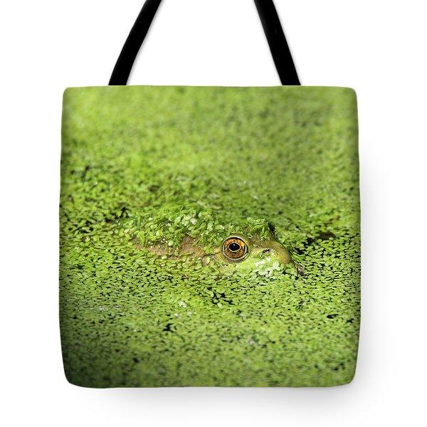 Green Frog Stony Brook New York Tote Bag