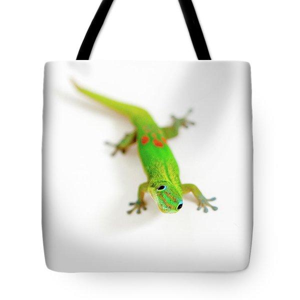 Green Gecko Tote Bag