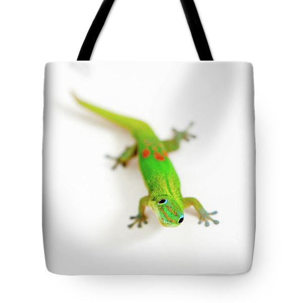 Green Gecko Tote Bag