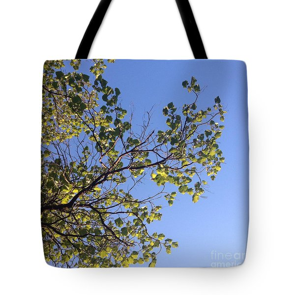 Green Glow Tote Bag by Nora Boghossian