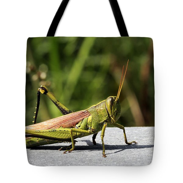 Green Grasshopper Tote Bag