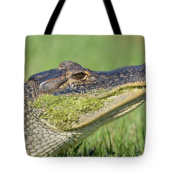 Tote Bag featuring the photograph Green Grin  by Kathy Gibbons